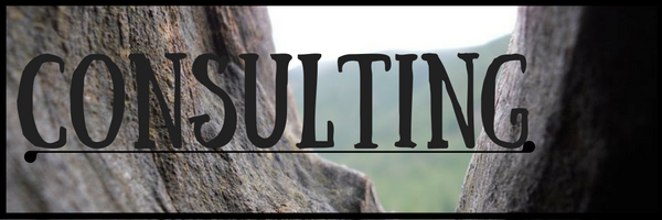 consulting header